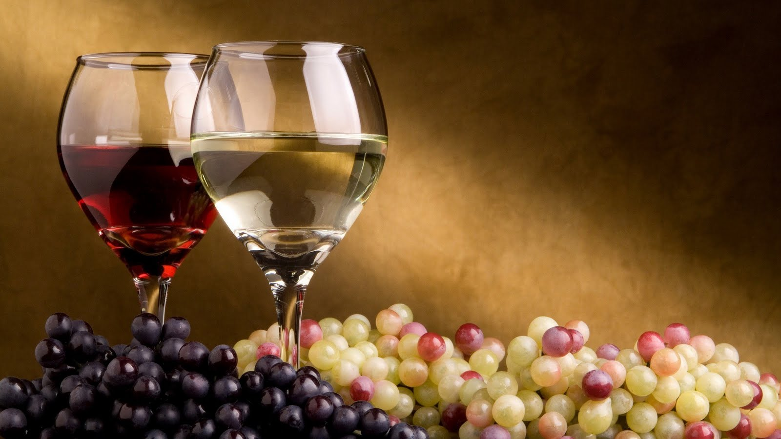 wine tasting cabernet